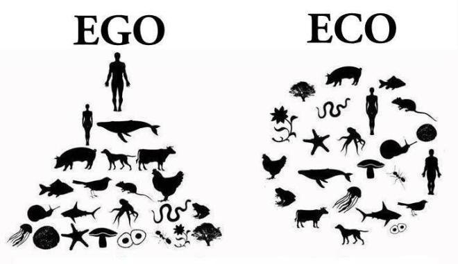 ego_vs_eco